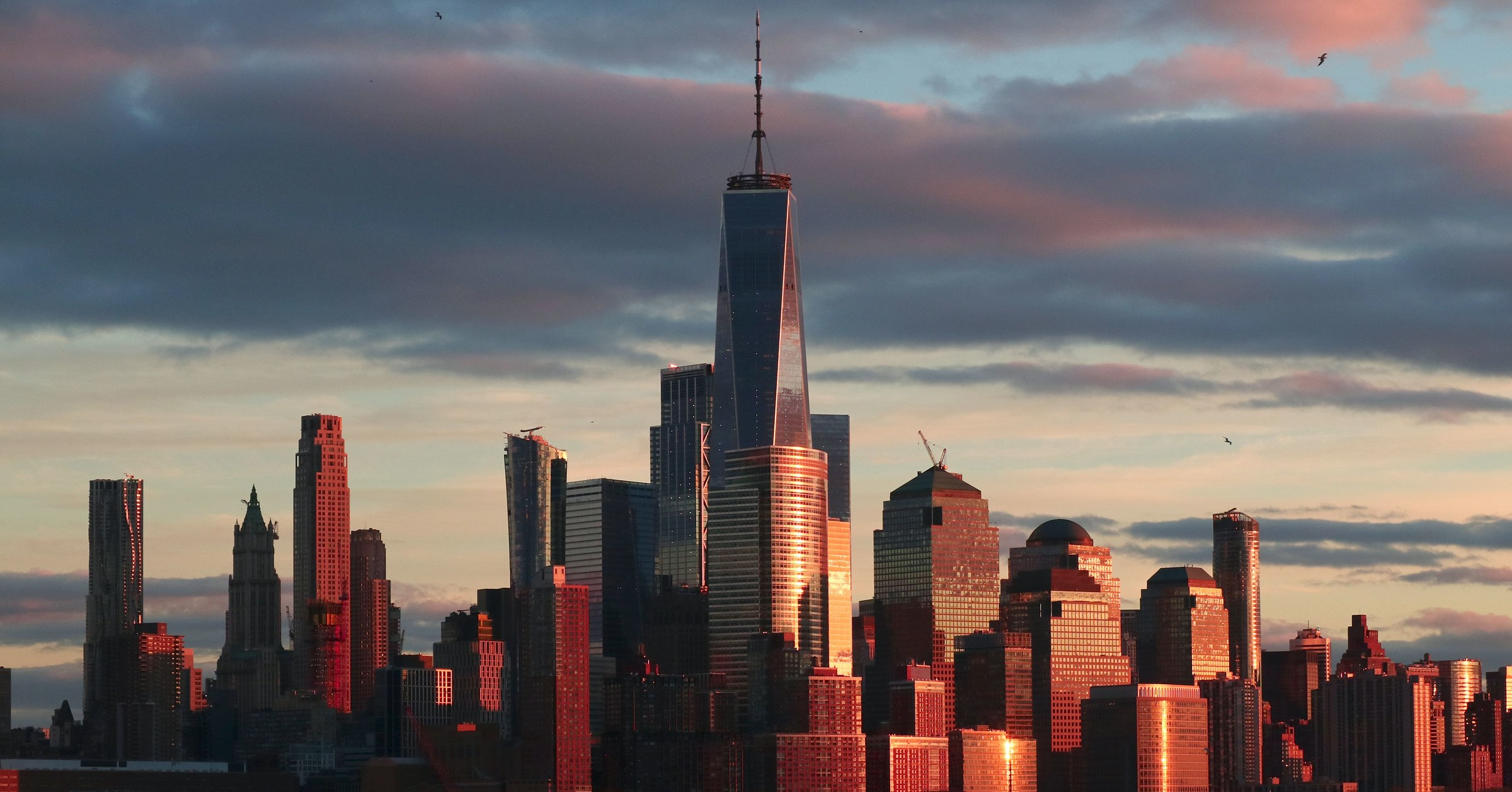 New York City's Aggressive Climate Regulation Takes Purpose at Skyscrapers
